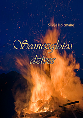Holcmanes-vaaks-ok